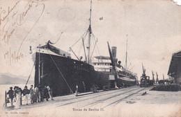 BRAZILIE / DOCAS DE SANTOS III  1904 - Otros