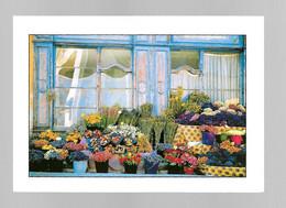 Pays Méditerranéen - Le Fleuriste - Boutique - Photo Colomb - Provence-Alpes-Côte D'Azur
