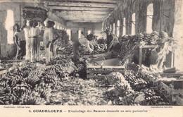 Guadeloupe - L'emballage Des Bananes Demande Un Soin Particulier - Unclassified