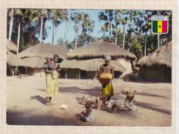 20A2927 SENEGAL CASAMANCE VILLAGE DE BASSE CASAMANCE CACHET LINEAIRE EN LIGNE SALLANCHES - Senegal
