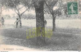 BOUFARIK En 1910 - La Terrible Invasion De Criquets # Insectes # Catastrophe # Agriculture - Desarbais Éditeur (¬‿¬) ♦ - Other Cities