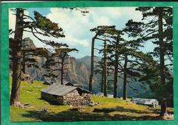 Zonza Quenza (20) Col De Bavella Bergeries Et Refuges 2scans 27-07-1973 Cachet De Sermano - Altri Comuni