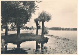 Nederland - 1946 - 5 Op 7,5 Cent Veth, Fotokaart Weesp, De Vecht Met Jachthaven, Briefkaart G287k - Ongebruikt - Ganzsachen