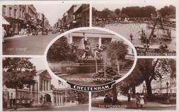 CHELTENHAM MULTI VIEW - Cheltenham
