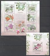 BC1331 2010 MOZAMBIQUE MOCAMBIQUE FLORA MEIO AMBIENTE FLOWERS ORCHIDS ORQUIDEAS 1SH+1BL MNH - Orchids
