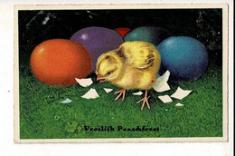 56756 - PAQUES POUSSINS - PASEN KUIKENS - VROOLIJK PAARSFEEST - Easter