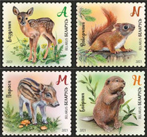 Belarus 2020 -Wild Baby Animals. Mammals Säugetiere Tierbabys Mammifero Bielorussia/Biélorussie/Wit-Rusland/Weißrussland - Belarus