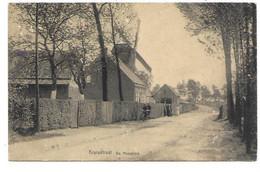 Moerbeke-Waas - Kruisstraat - De Molenhoek - Molen. - Moerbeke-Waas