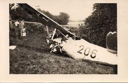 Aviation - Avion Wild - Propriétaire Section Romande - Lausanne-Blécherette - 1919-1938