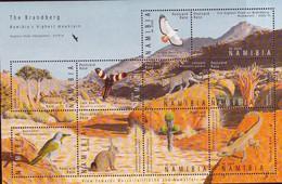 2009 UMM M/S The Brandberg - Namibia (1990- ...)