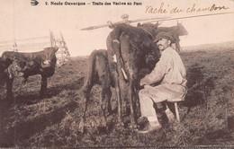 Noste Ouvergne Traite Des Vaches Au Parc - Paysan - Lait -  Vaché Du Chambom - Le Chambon-sur-Lignon