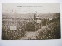 REIMS La FERME Des ANGLAIS Champs De Sélection - CPA Circulée Année 1928 51 MARNE - Reims