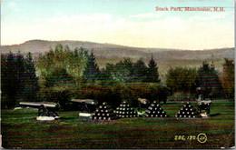 New Hampshire Manchester Stark Park 1909 - Manchester