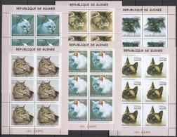 KV273 2002 GUINEA FAUNA PETS DOMESTIC ANIMALS CATS LES CHATS !!! 6SET MNH - Domestic Cats