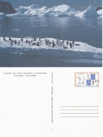 France TAAF 1990 Entier Postal Sur Carte Postale YT 1-CP (157)  Neuf - Storia Postale
