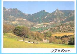 Sainte-Jalle (Buis Les Baronnies-Drôme)-Berger Et Son Troupeau Dans La Vallée De L'Ennuye-Photo P.Y Le Bosser-1993 - Buis-les-Baronnies