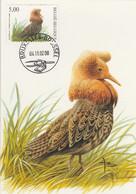 BUZIN. LE COMBATTANT VARIE - 1985-.. Pájaros (Buzin)