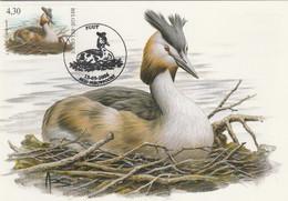 BUZIN. LE GREBE HUPPE - 1985-.. Pájaros (Buzin)