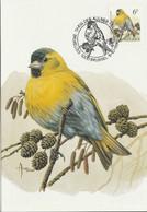 BUZIN. LE TARIN DES AULNES - 1985-.. Pájaros (Buzin)