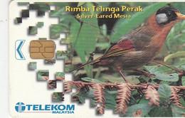 Malaysia - Bird - Rimba Telinge Perak - Malaysia