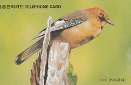 Korea South -  Bird - Jay (Letter J) - Corée Du Sud