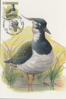 BUZIN. LE VANNEAU HUPPE - 1985-.. Pájaros (Buzin)