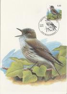 BUZIN. LE GOBE MOUCHE GRIS - 1985-.. Pájaros (Buzin)