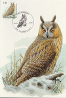 BUZIN. LE HIBOU MOYEN DUC - 1985-.. Pájaros (Buzin)
