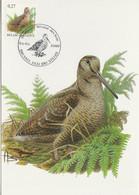 BUZIN. LA BECASSE DES BOIS - 1985-.. Pájaros (Buzin)