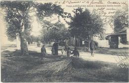 Cpa 30 – Vallabrègues – Boulevard Emile Jamais ( Vanniers ) - Autres Communes