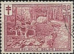 BELGIUM 1929 Anti-TB Fund - 60c.+15c - Promenade D'Orleans, Spa FU - Usados