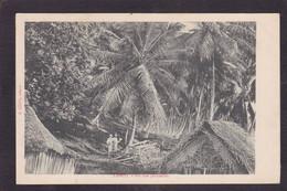 CPA Tahiti Océanie Polynésie Française Circulé Sur Une Plantation - Tahiti