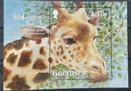 Guernsey 2020 MNH - Endangered Species Kordofan Giraffe - Guernsey