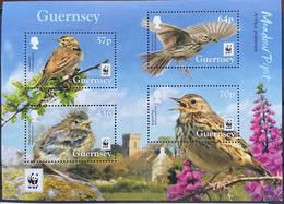 Guernsey 2017 MNH - Birds . WWF Endangered Species Meadow Pipit - Guernsey