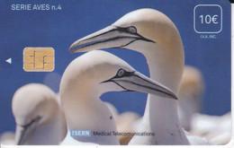 ISN-073 TARJETA DE ESPAÑA DE ISERN DE LA SERIE AVES Nº4  (BIRD-PAJARO) - Non Classés
