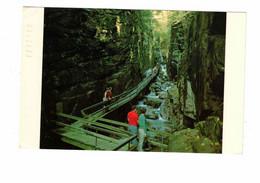 FRANCONIA NOTCH, New Hampshire, USA,  Flume Gorge, Old Chrome Postcard - Sonstige