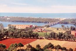 Cartolina - Sabaudia - Ponte Giovanni XXIII Sul Lago Di Paola - 1966 - Latina