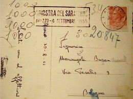 AREZZO CATTEDRALE TARGHETTA MOSTRA DEL SARACINO AREZZO 4 SETTEMBRE 1955 HW3726 - Arezzo