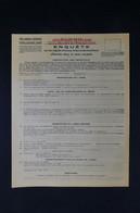 GUERRE 1939/45 - Formulaire D'enquête Sur Le Dépôt D'armes à Feu Et De Munitions En Zone Occupée  - L 85086 - Documentos