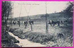 Cpa Les Paturages Route De Bray à Chaussy Carte Postale 95 Val D'Oise Proche Omerville Genainville Magny En Vexin - Altri Comuni