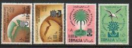 Somalia (AFIS)- 1960 World Refugee Year-Année Mondiale Réfugié (Flüchtlinge-Rifugiati) ** - Somalië (AFIS)