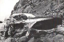 CPM - MADEIRA - Musée De La Pêche à La Baleine - Repro Scène De Travail Sur L'île ... - Madeira
