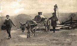 HOLYWELL'S ONLY WATER SUPPLY  CART ANE DONKEY EZEL ESEL MULES Donkeycollection - Flintshire