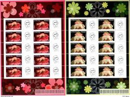 BLOC FEUILLET N° F3804aa & 5Aa  C'EST UN GARCON - FILLE GOMME LOGO PRIVE TB COTE YVERT 400  EUROS - Personalized Stamps
