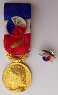 Médaille HONNEUR TRAVAIL Avec Palme Et Rosette + Rappel - Non Classificati