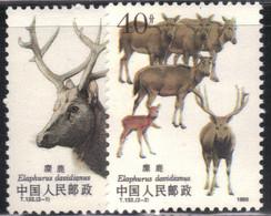 Chine 1988 Yvert 2917/18 Neufs** MNH (AE9) - Unused Stamps