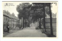 Stokkem  Steenweg Naar Molenveld - Dilsen-Stokkem