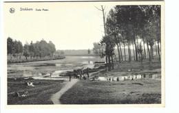 Stokkem  Oude Maas - Dilsen-Stokkem