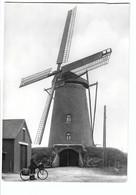 ST.HUIBRECHTS-LILLE  De Windmolen - Neerpelt