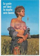 CPM - Editions FAROU - PU 5 - Le Grain Est Doré La Récolte Sera Bonne - Pin-Ups